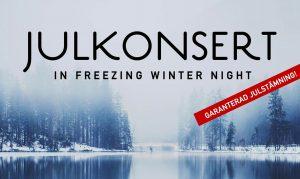 julkonsert_freezing